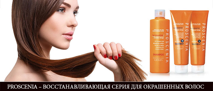 lebel proscenia, proscenia, шампунь proscenia, proscenia shampoo, proscenia ac pretreatment