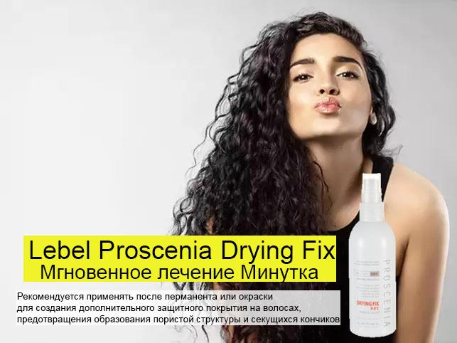 Lebel Proscenia Drying Fix - Мгновенное лечение Минутка 200мл