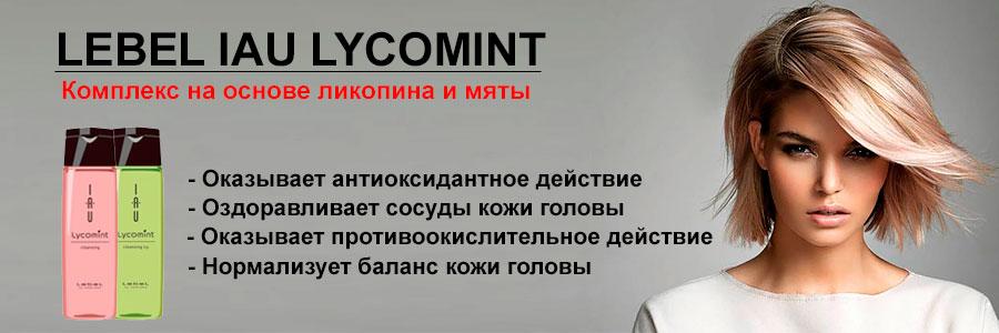 Lebel IAU Lycomint, купить лебел
