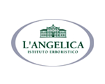 L`Angelica